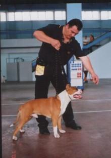 Tony Bucuresti 1